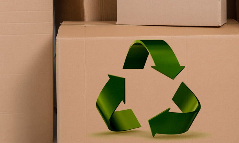 sustainable adhesives