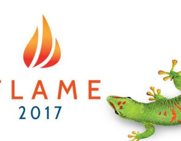 Flame Conference